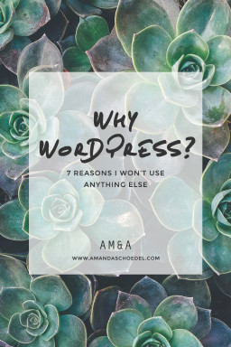 Seven reasons WordPress is the only platform I use to build websites.